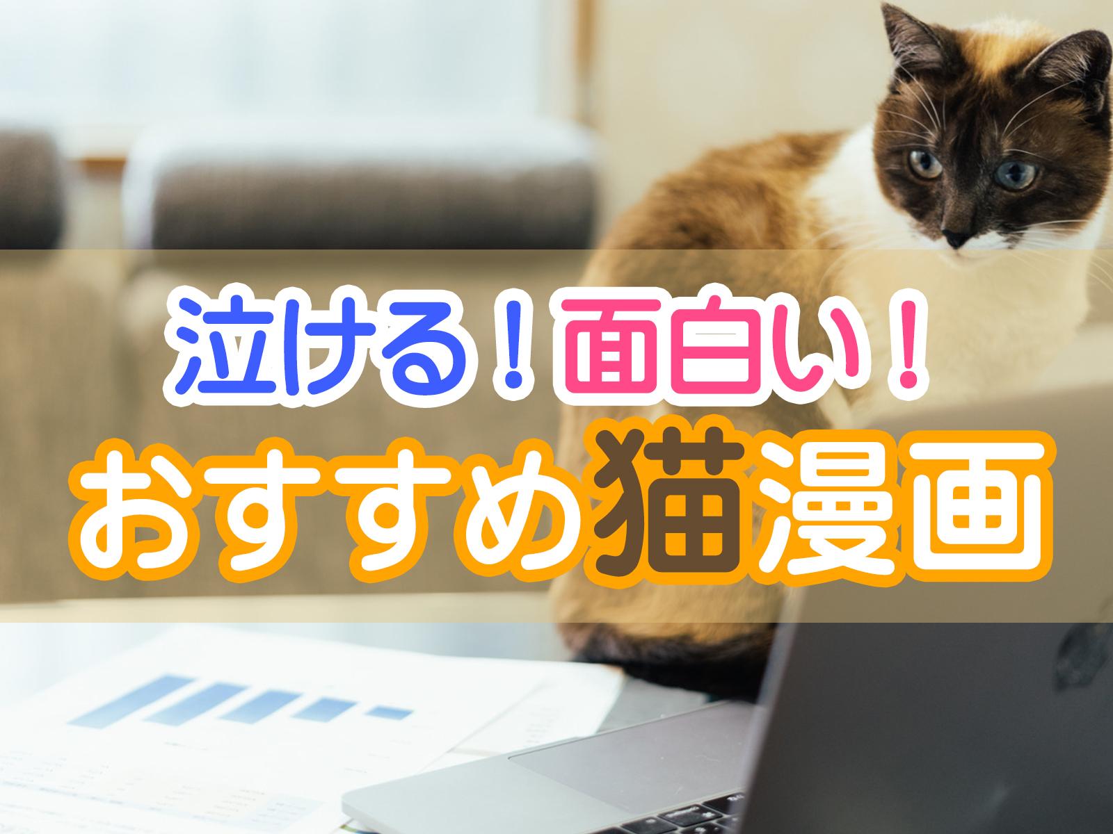 泣ける!面白い!おすすめ猫漫画